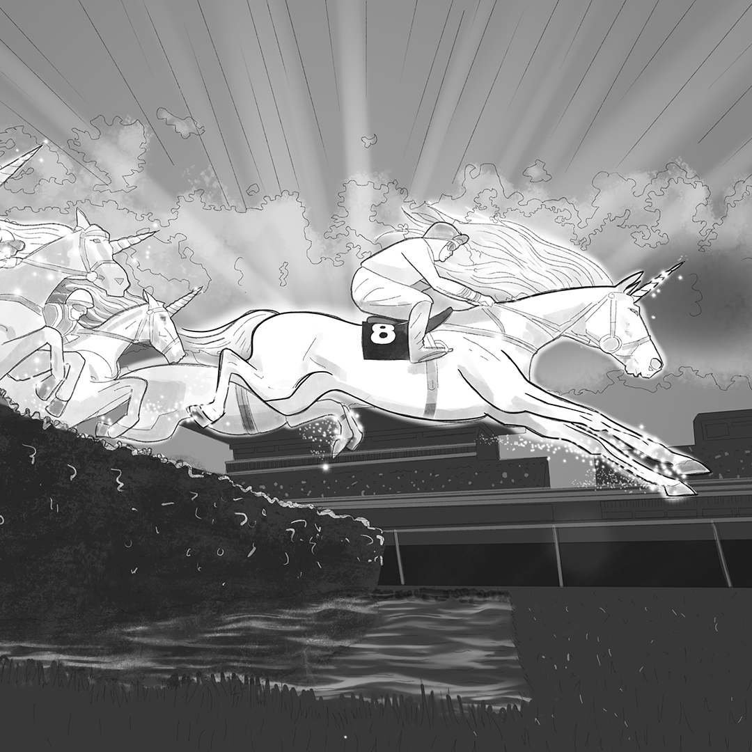 A black & White 2D Visualisation of a unicorn in a horse race
